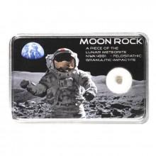 Authentique NWA 7986 Moon meteorite